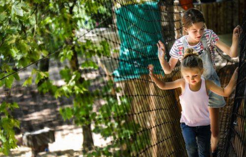 Escal'arbre à Taizé Aizie